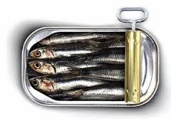 Étalage de sardines au camping