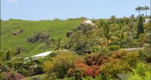 Boucan-Canot est sur la côte ouest de l'île de la réunion. C'est une des plus belles plages de l'île, où se retrouvent les surfers.